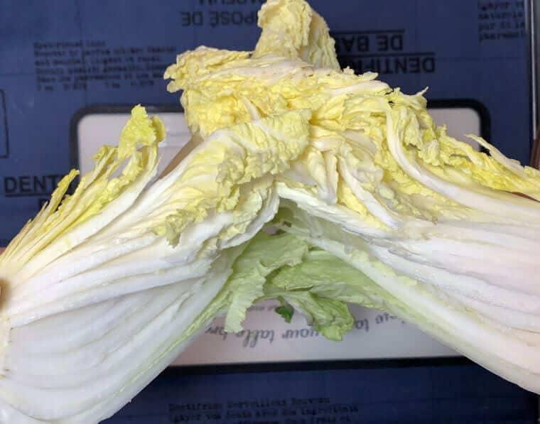 白菜を縦にカットしている写真